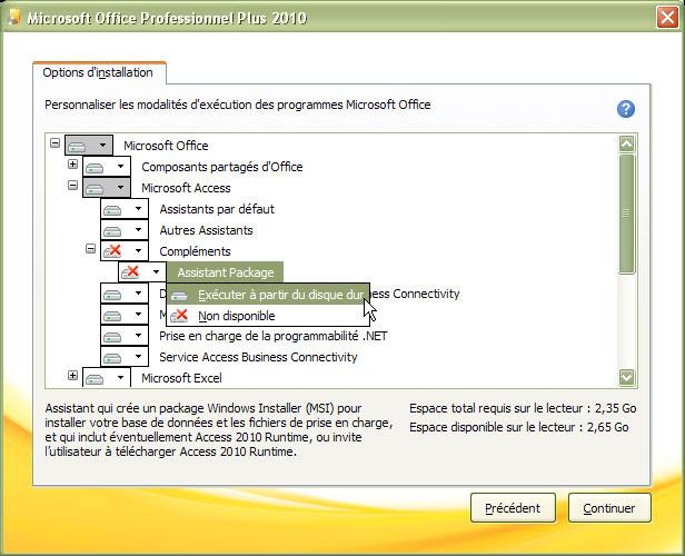 microsoft access runtime 2010